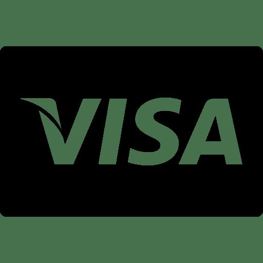 visa credit payment finisher media